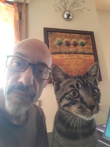 2020 - Smart working? Cat working!